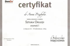 Anna-Przybyla-okluzja-4-