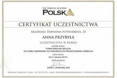 Anna-Przybyla-okluzja-5