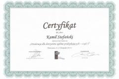 certyfikat3-copy