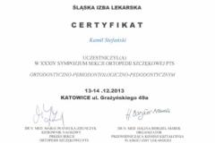 orto-kato-2013-1